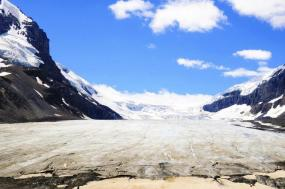 7-Day Canadian Rockies & Yellowstone Tour