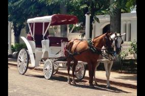 Colonial Granada & The Pacific Coast Highlights tour