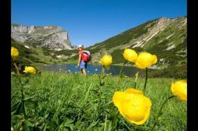 The Austrian Tyrol tour