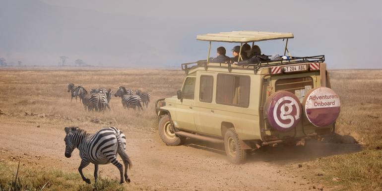 Tanzania Safari Experience tour