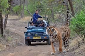 8-Days Private Tour Delhi, Agra, Jaipur with Ranthambore  Tiger Safari tour