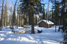 Denali Unexplored - Basecamp Hiking in Denali National Park tour