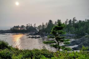 Gulf Islands, B.C., Canada Tour - With National Park Reserve tour