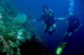 Solomon Islands - Wreck Diving Expedition tour