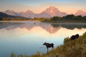 Montana Family: Great Western Adventure tour