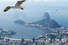 Brazil Grand Nature Tour tour