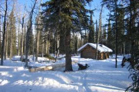 Alaska Coast to Denali Journey tour