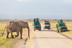 Okavango Experience tour