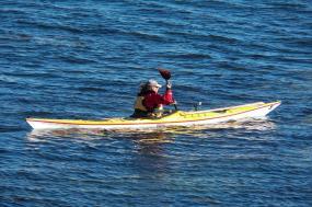 San Juan Islands Weekend Kayaking tour