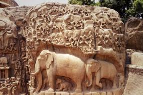 Splendours of Southern India tour