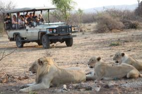 Super Luxe African Explorer tour