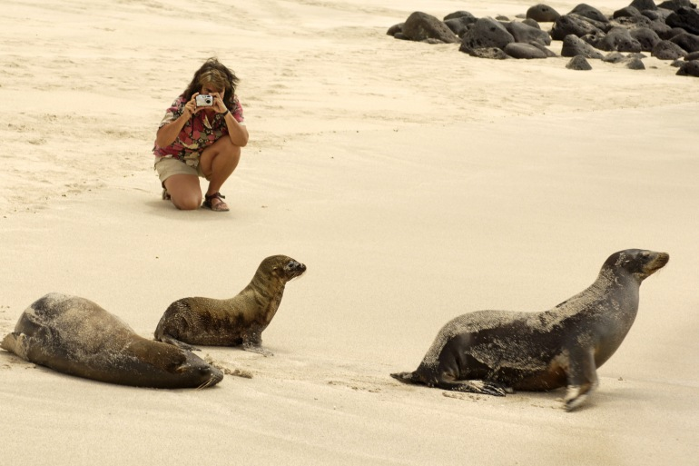 Family Friendly Bird watching Galapagos Unbound package