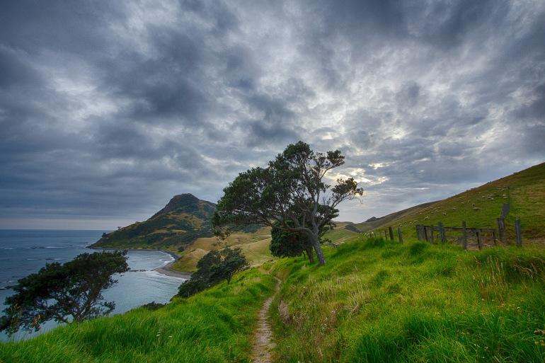 Trail corum-New Zealand-583174-P