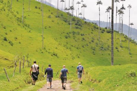 The Lava Line (Start Quito, end Guayaquil) tour