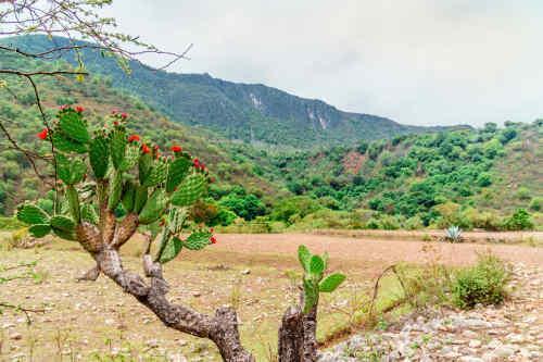 Adventure in Mexico: Bike, Hike & Beach tour