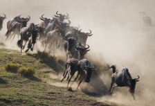 10 Epic National Park Adventures Around the World