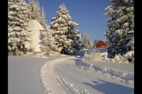 Cross-country Skiing: Kamben  tour