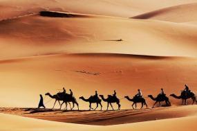 Escape To The Desert tour