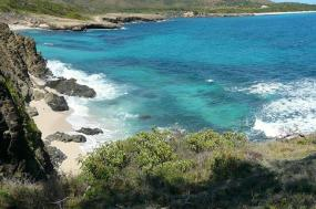 Immerse yourself in the Heart of the island tour