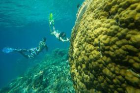 Islands of Indonesia tour