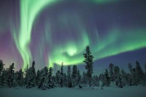 Arctic Sweden & the Icehotel tour