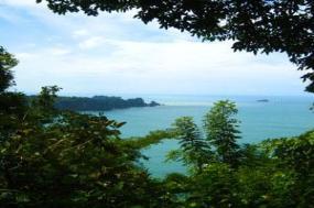 Costa Rica Wonders with Tortuguero & Manuel Antonio tour