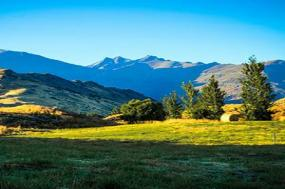 Naturally New Zealand with Sydney, Cairns & Melbourne tour
