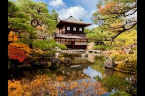 Highlights of Japan tour