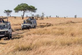 Serengeti Trail tour