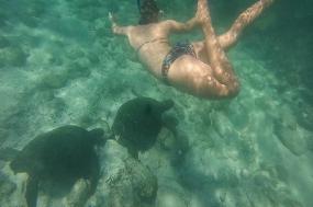 8-Day Galapagos Tour W/ 4 Navigable Islands tour
