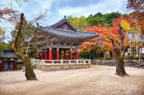 8-Day Unesco World Heritage Korea tour