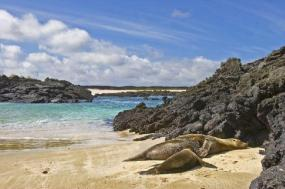 4-Day Galapagos Land Tour: San Cristobal - Santa Cruz Island tour