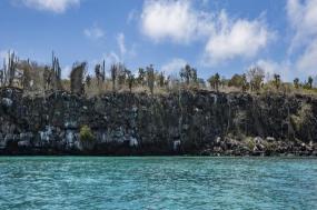 Galápagos — South & East Islands aboard the Yolita tour