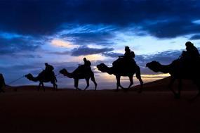 Imperial Treasures and Desert Wonders tour
