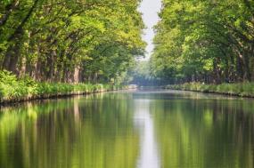 The Canal du Midi  (Homps to Castelnaudary)