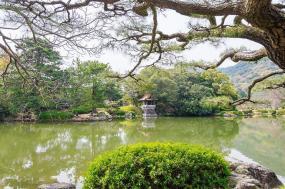 Hidden Island Naoshima Tour tour