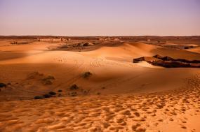 Magnificent Morocco tour