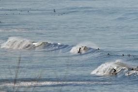Sun Seeker Vacations - Surfer's Paradise tour