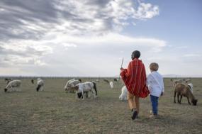 Kenya: Safari & Conservation