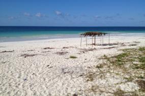 Mozambique Bush and Sea Safari tour