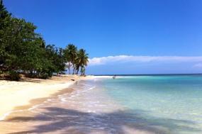 Dominican Republic: Endemics of Hispaniola tour