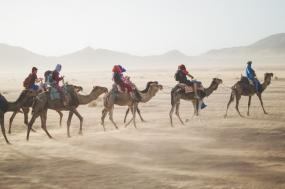 Road cycling Tour in Morocco 15 Days