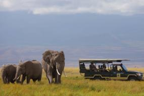 9 Day Kenya Luxventure Safari tour