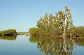 Kakadu Top End Adventure tour
