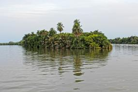 The Rivers of Gambia and Senegal