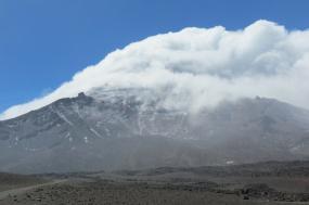 Volcanoes Avenue | Cotopaxi, Chimborazo & Devil´s Nose Train