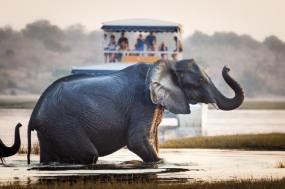 11 Day Kalahari, Okavango, Linyati & Chobe Luxury Safari tour