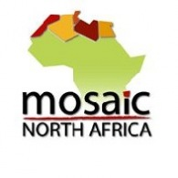 Mosaic North Africa