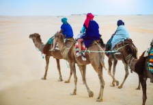 Riding camels on a Small Group Tour