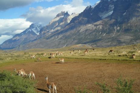 Argentine & Chilean Patagonia 18 Days tour